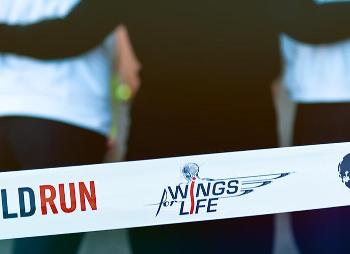 """Domani anche a Bari la """"Wings for life world run"""": ecco come partecipare"""