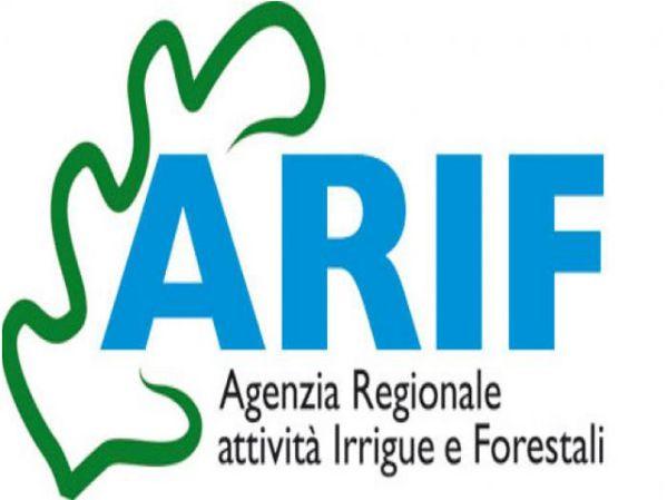 Regione: Commissione, chiarimenti su spesa personale Arif