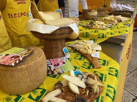 Coldiretti Puglia, +7,5% export formaggi è record storico